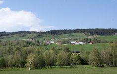 Bekkjadalen og Hemistua øverst til venstre og Nordgård. Midt på bildet: Ytre og Austre Slåa. Huset nederst er Sten.