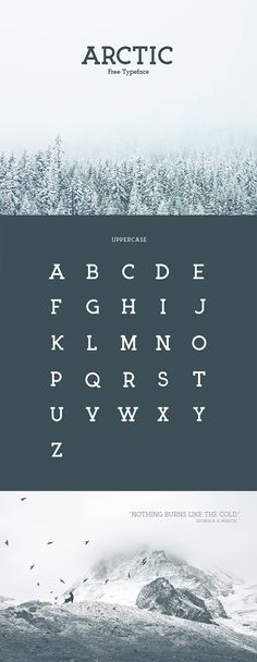 Arctic serif font for when you need something a little more sophisticated and upleveled Graphic Design Fonts, Web Design, Typography Design, Logo Design, Best Free Handwritten Fonts, Great Fonts, Masculine Font, Common Fonts, Abc Font