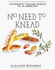 No Need to Knead: Handmade Italian Breads in 90 Minutes by Suzanne Dunaway, http://www.amazon.com/dp/0786864273/ref=cm_sw_r_pi_dp_lbbRqb1SK64J0