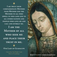 The Blessed Virgin Mary to St. Happy Feast of Our Lady of Guadalupe. Catholic Quotes, Catholic Prayers, Catholic Saints, Christianity Quotes, Catholic Beliefs, Roman Catholic, Blessed Mother Mary, Blessed Virgin Mary, Virgen De Guadalupe