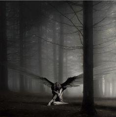Image detail for -Dark Angels Wallpapers 2012 Dark Angels, Fallen Angels, Dark Fantasy, Fantasy Art, Fantasy Forest, Fantasy Images, Fantasy Romance, Fantasy Landscape, Gothic Wallpaper