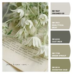 Color Inspiration Paint colors from Chip It! by Sherwin-Williams Scheme Color, Colour Schemes, Color Combos, Sage Color Palette, Wall Colors, House Colors, Paint Colors, Painting Inspiration, Color Inspiration