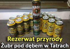Wtf Funny, Hilarious, Polish Memes, Weekend Humor, Funny Mems, Smile Everyday, Quality Memes, Man Humor, Best Memes