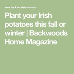 Plant your Irish potatoes this fall or winter | Backwoods Home Magazine