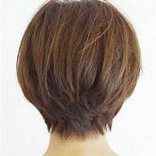 Thick Haircuts Women Over 50 Short Hairstyle Back View