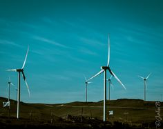 Wind Farm - Canela Chile - October 9 2014