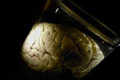 Psykisk sjukdom under lupp | SvD
