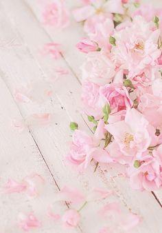 "Kiyumie: "" by nelly kireva "" cherry blossom wallpaper iphone, pastel iphone wallpaper,"