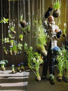 La poésie d'un jardin suspendu Design gardening