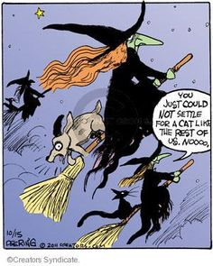 Pagan Humor Because We Get It. Welcome to Pagan Humor! A place to get laughs, the kind that only we as a community would get (or at least make. Fröhliches Halloween, Halloween Cartoons, Halloween Pictures, Holidays Halloween, Vintage Halloween, Season Of The Witch, Witch Art, Wicked Witch, Thanksgiving