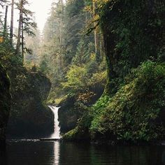 Punch Bowl Falls.  Love this hike just outside of Portland!