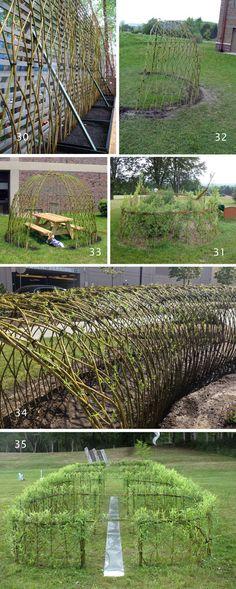 Historical Books about the Techniques of Willow Basketry Garden Yard Ideas, Garden Trees, Easy Garden, Garden Spaces, Garden Crafts, Outdoor Privacy, Outdoor Landscaping, Outdoor Gardens, Willow Fence