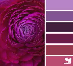 flora tones color escape - gorgeous color palette inspiration idea - purple and pinks
