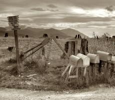"""October """"Crossroads off the highway in a cut-over area."""" Medium-format nitrate negative by Dorothea Lange. Dorothea Lange Photography, Shorpy Historical Photos, Art Themes, Idaho, Vintage Photos, Poster Size Prints, Videos, Canvas Prints, Fine Art"""