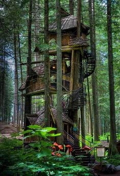 The Enchanted Forest Tree House. A three level tree house straight from a fairy tale. It is supported by several tree trunks and has a long ...