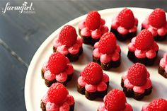 Fudgy Spring Brownie Bites with Fresh Raspberry Buttercream-yummy! Mini Desserts, Just Desserts, Delicious Desserts, Dessert Recipes, Yummy Treats, Sweet Treats, Raspberry Brownies, Raspberry Chocolate, Chocolate Cups