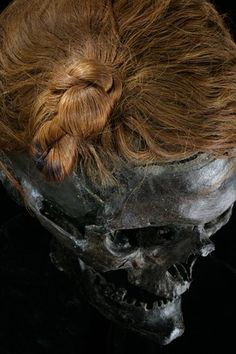 """Braided with a flourish, the hair on Osterby Man, a body dug from a bog in northern Germany, is wound in an Iron Age style called a Swabian knot. Tacitus, a Roman historian, wrote that free men belonging to a group called the Suevians wore their hair like this and that young warriors from other Germanic tribes copied the style. """"They thus dress when proceeding to war,"""" wrote Tacitus, """"and deck their heads so as to add to their height and terror in the eyes of the enemy."""""""