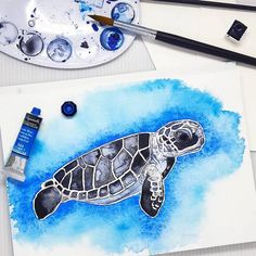 Beautiful Watercolor Illustrations of Endangered and Vulnerable Marine and Animal Life