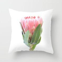 pink protea cushion - on society6