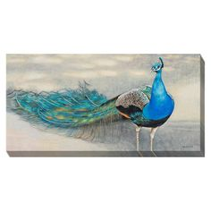 Peacock Canvas Art