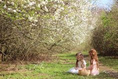 Gingerlillytea: Blossom flower fairies
