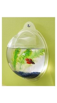 I like the idea of a fish bowl that doesn't take up space and doubles as a cool feature in the room.