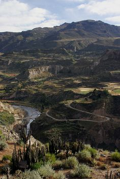 Colca Canyon is a canyon of the Colca River in southern Peru, located about 100 miles northwest of Arequipa.  Go to www.YourTravelVideos.com or just click on photo for home videos and much more on sites like this.