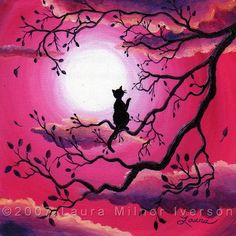 pink & black / moon & cat