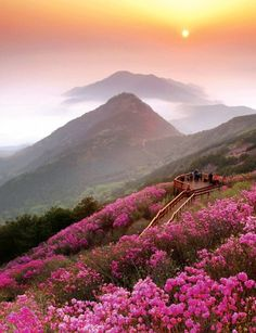 Sunset, Cheonju-san, Korea, No matter what the politics are the sun rises and sets, flowers bloom, and the beauty of nature continues to make us go AWWW!