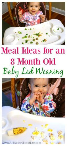 meals for an 8 month old- baby led weaning. Great snack and meal ideas for your weaning infant!