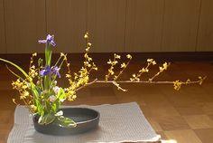 Moribana Water Reflecting Style