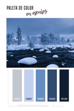 Paleta de color para tu branding o marca. Gama de colores para tu feed de Instagram #colorscheme #colorschemes #colorpalette #colorpalettes #azul #branding #colorinspiration, color instagram feed, inspiration color, inspiration, azul, gris, neutro