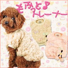 犬服ブランド【AirBalloon(エアバルーン)】 もふっと♪トレーナー 犬の服サイズ(XS〜3L,MS,MM)