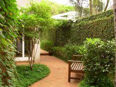 Corredor com jardim, dicas para cultivar uma área verde! | Click Obra