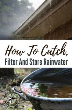 Good thoughts: How To Catch, Filter and Store Rainwater — When you ask most people how to catch rainwater, they think it is as simple as having a slanted surface that drains into a gutter and then into some kind of holding tank. Homestead Survival, Survival Prepping, Emergency Preparedness, Survival Skills, Survival Stuff, Survival Equipment, Emergency Preparation, Survival Hacks, Emergency Supplies