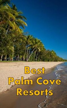 Check out the best Palm Cove Resorts and end up in a beautiful spot for an awesome vacation. Here are the top resorts in Palm Cove, Queensland. 5 Star Resorts, All Inclusive Resorts, Luxury Resorts, Cairns Queensland, Queensland Australia, Best Hotels, Amazing Hotels, Hotel Hacks, Australia Holidays