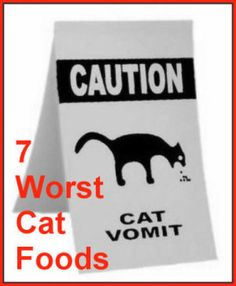 Chances are you are feeding your cat junk food. I'm sure it's not  intentional. Maybe you don't know that the dry foods with the fish  shapes and bright colors are like cocaine to your cat. A few bites of  his cat kibble will make his blood sugar jump sky high, because he does  not have the enzymes necessary to digest starch. It's BAD for him, and it causes all kinds of illnesses, long term.