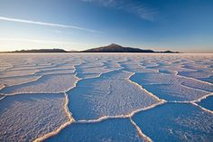 Salar de Uyuni amid the Andes in southwest Bolivia is the worlds largest salt flat. Its the legacy of a prehistoric lake that went dry leaving behind a desertlike 11000-sq.-km. landscape of bright-white salt rock formations and cacti-studded islands. Its otherworldly expanse can be observed from central Incahuasi Island