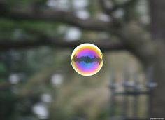 El Lago en una burbuja