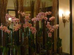 vasos e flores