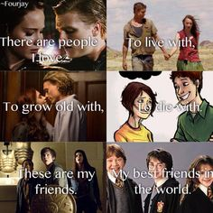 The Hunger Games, The Host, The Mortal Instruments, The Fault In Our Stars, Percy Jackson and Harry Potter