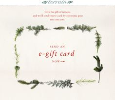 Give the gift of Terrain, and we'll send your e-gift card by electronic post the… Email Gift Cards, Free Gift Cards, Gift Voucher Design, Holiday Emails, Email Design Inspiration, Email Marketing Design, Gift Wraping, Christmas Design, Holiday Gift Guide