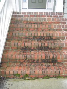 Remove mold and mildew by power washing the front steps of your home. Brick Steps, Brick Walkway, Concrete Steps, Pressure Washing Tips, Mold And Mildew Remover, How To Clean Brick, Roof Cleaning, Cleaning Tips, Front Steps