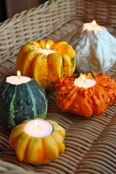Get however many gourds you want. take off the top like u would w/ a pumpkin then take out the goo and put a candle in it. cute!