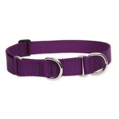"Solid Color 1"" Adjustable Large Dog Combo Collar - Size: Small (15"" - $13.95"