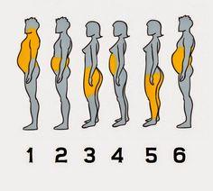 TU SALUD: Este es tu tipo de grasa y así la puedes eliminar