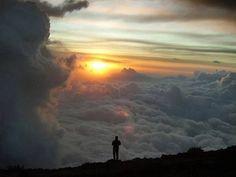 Фото: Приучай себя к тому, чтобы у тебя были только хорошие мысли.  Они совершат с твоим сознанием чудеса.  инет