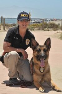 Ask the Experts: K9 Police Dogs