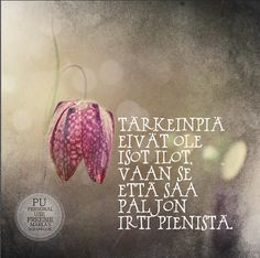 Kirjoitin kauneimman runoni iltaruskoon meren vaahtoon linnunlennon vanaan. Vain sinä ymmärsit sen. Ja tulit. (Maaria Leinonen) Big Words, Cool Words, Motivational Quotes, Inspirational Quotes, Beautiful Mind, Good Thoughts, Mood Quotes, Motivation Inspiration, Funny Texts