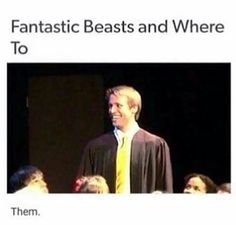 NEWT IS A HUFFLEPUFF YOU KNOW WHAT THAT MEANS